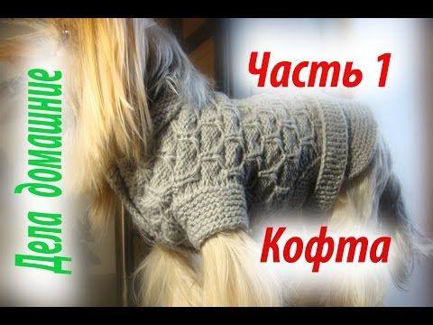 Кофта для собаки своими руками.Часть 1.Уроки вязания на канале ''Дела до...