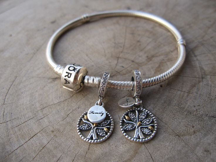 Dangle Family Heritge Charm with Clear Cubic Zirconia,925 sterling silver charm,pandora style charm,women bracelet,family charm bracelet, by ALOR925 on Etsy