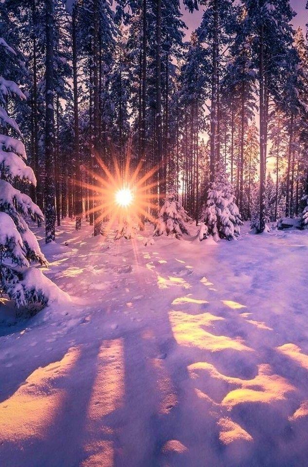 Winter sun lighting up the snow! So beautiful!