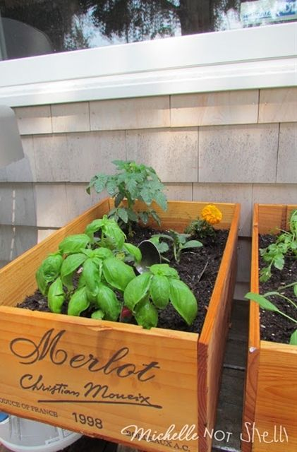 DIY herb garden using wine boxes. Cute Idea