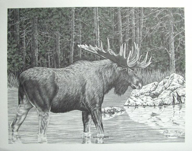 Western Pencil Art Print With Water