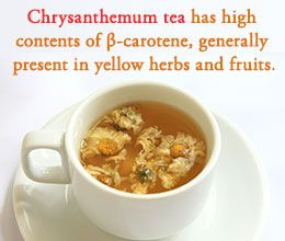 Chrysanthemum tea benefit