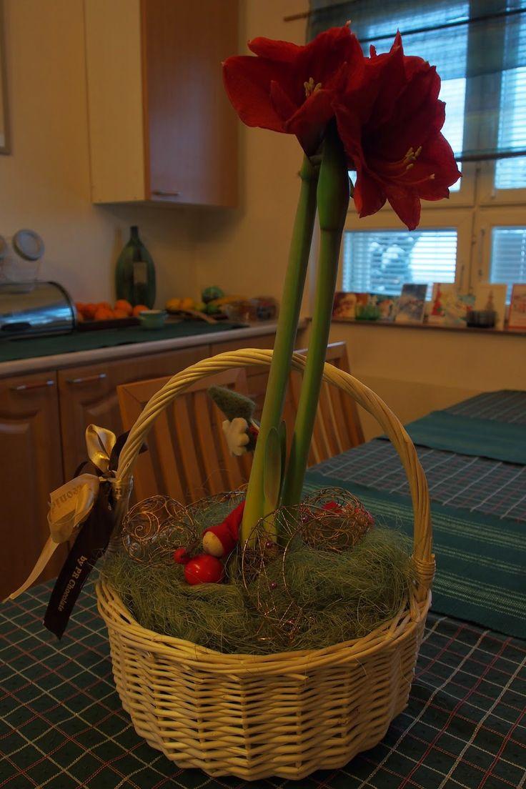 Vaateviidakko: Helpot ja nopeat kukka-asetelmat