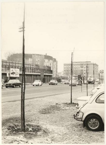 Mantova - Piazzale di Porta Cerese - Alberi nuovi