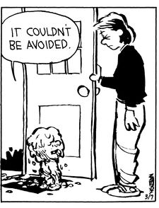 Calvin and Hobbes (DA 4 of 4) - It couldn't be avoided.