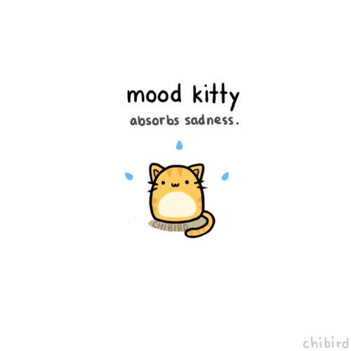 Mood kitty. So cute!