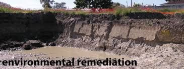 Znalezione obrazy dla zapytania Environmental remediation