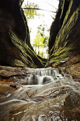 Turkey Run state park. Indiana.