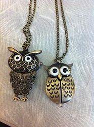 Big Brow Owl Watch