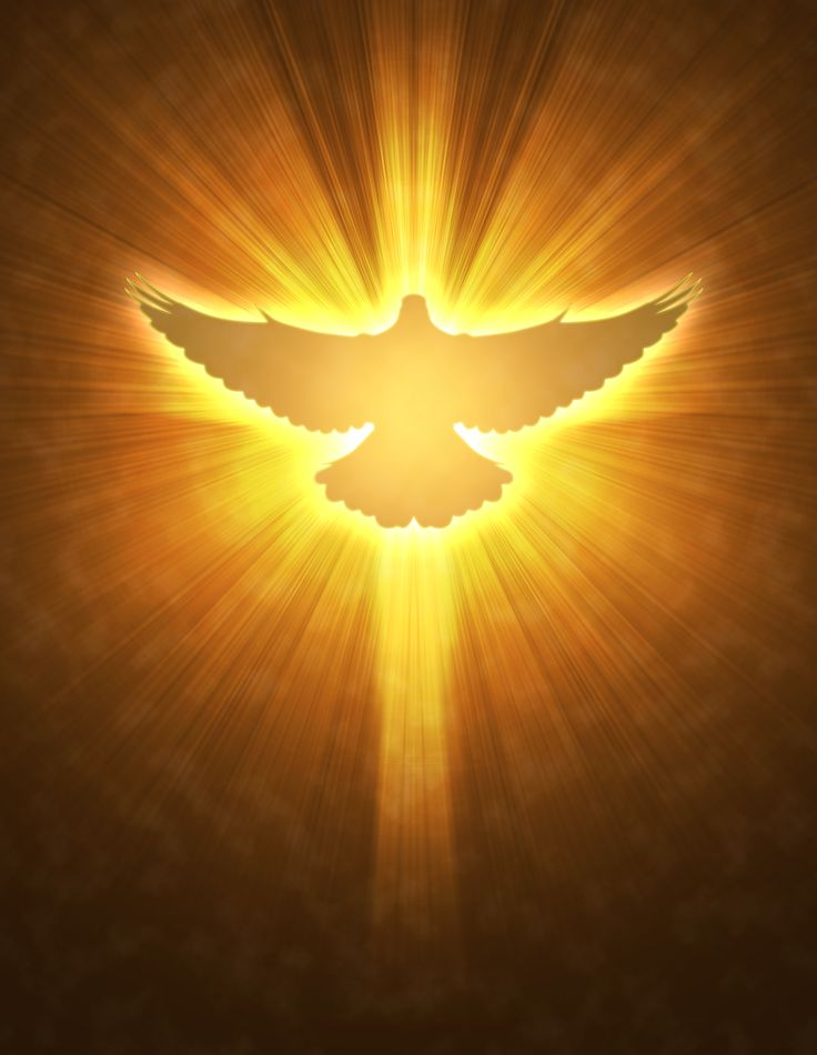 The dove is a symbol of the Holy Spirit that comes down form Heaven and acts as a guide for our faith journey. Description from pinterest.com. I searched for this on bing.com/images