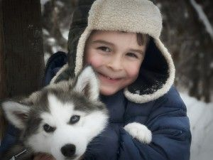 Is Frontline Plus Safe For Dogs & Children - NO! - Read this!