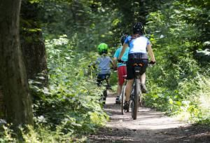 Best 8 Things to Do in Silver Spring, Maryland: Walk or Bike Along the Sligo Creek Stream Valley Trail