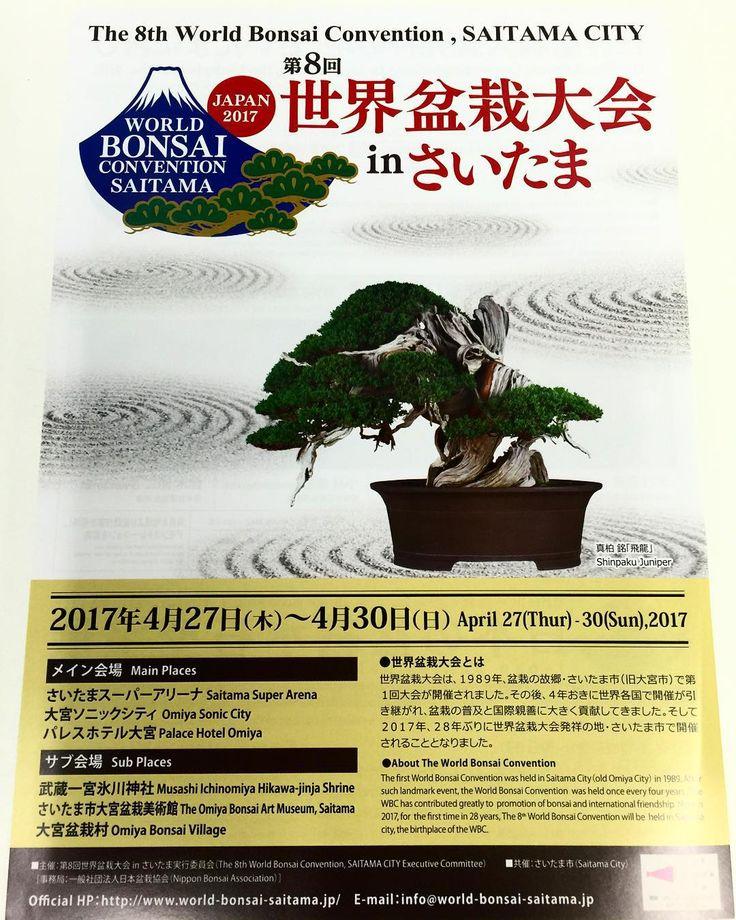 Хорошо растёт то что растёт медленно. Вот нам уже прислали приглашение на Всемирный  конгресс Бонсая который пройдет в конце апреля следующего года в префектуре Сайтама. Будем держать вас в курсе. Если кому-то требуется помощь в организации поездки на конгресс обращайтесь! www.midokoro.jp #планы #бонсай #закладки #Япония #туризм #праздники #растения #японскиисад #сады #парки #ландшафтныидизаинер #декоративныерастения