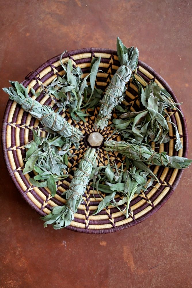How to grow your own white sage and use it medicinally, ceremonially and as a culinary spice.