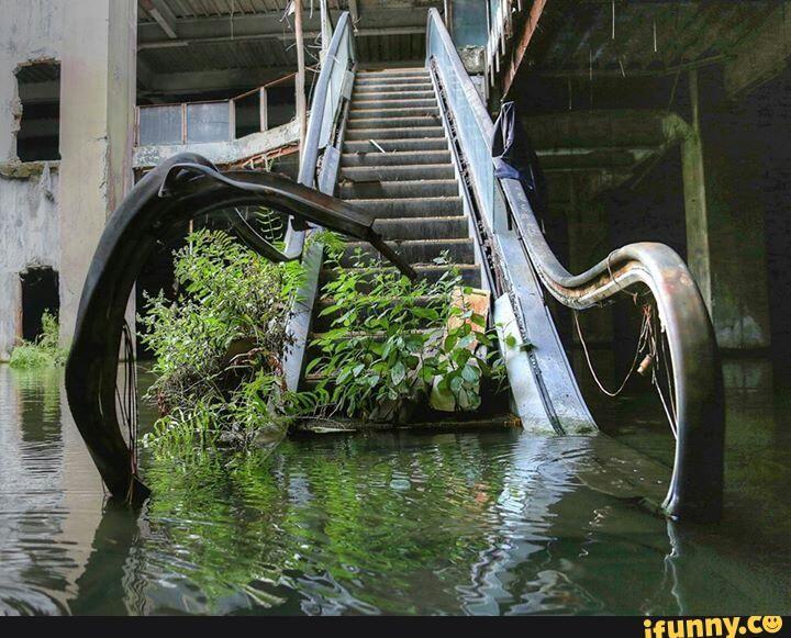 green aesthetic | green | Abandoned, Abandoned malls ...