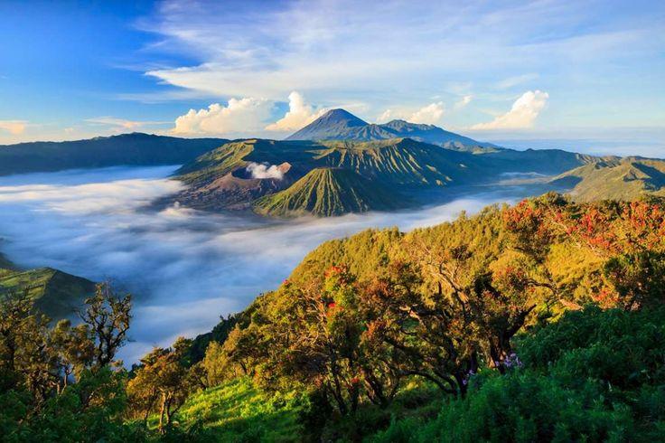LE BROMO (INDONÉSIE) - Situé sur l'île de Java, le Bromo s'ouvre sur un cratère de 800 mètres de diamètre. Ne manquez pas le lever du soleil, les plus chanceux admireront même les fumées du Semeru au loin et le Batok.  ...  - EMPRISE - Fotolia.com