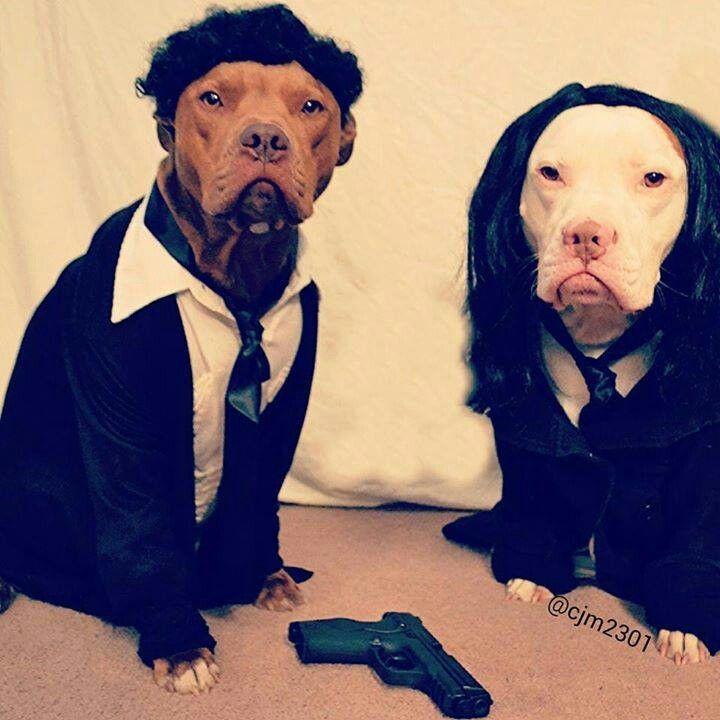 puppy fiction