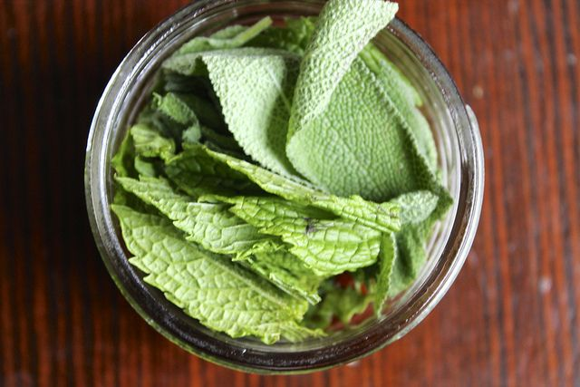 gotta try this - Natural Fly Repellant   The Dabblist by thedabblist, via Flickr