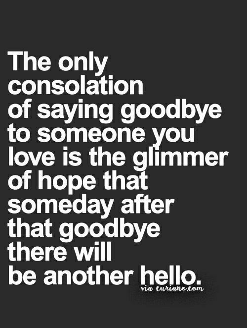 pinterest quotes life quotes and love quotes