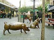 #Rundle Market, #Adelaide, #Australia