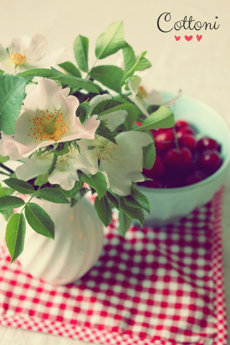 Wild roses and bowl of cherries