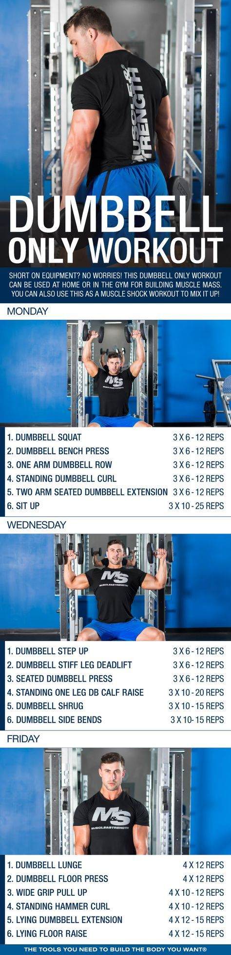 Short on equipment? No worries! This dumbbell only workout can be used at home or in the gym for building muscle mass. You can also use this as a muscle shock workout to mix things up.