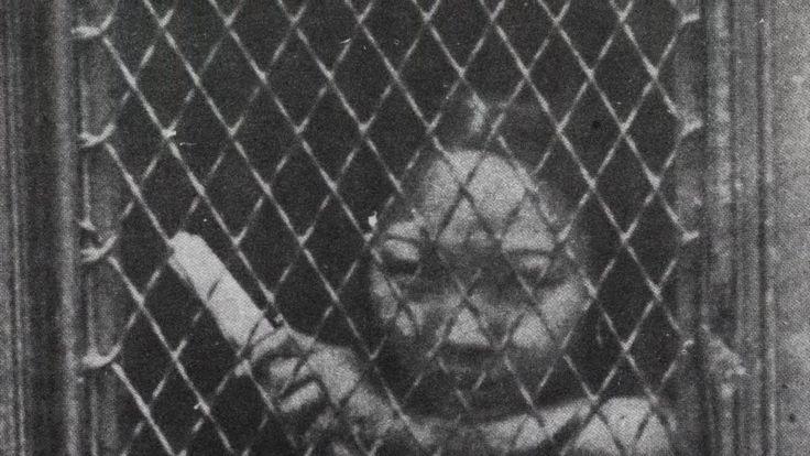 Le piccole schiavi Cinesi della Old America oce sottile,visetto impaurito e un corpo talmente esile da risultare quasi inesistente. Le piccole schiave Cinesi dell' antica Chinatown chiamavano i clienti al di là di una grata, l' unica forma di  #singsonggirls #magicoldamerica