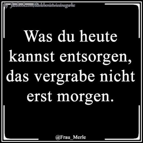 #lustig #spaß #sprüche #funnypictures #witzigebilder #jokes #instafun #lachflash #lustigesbild #derlacher #humor