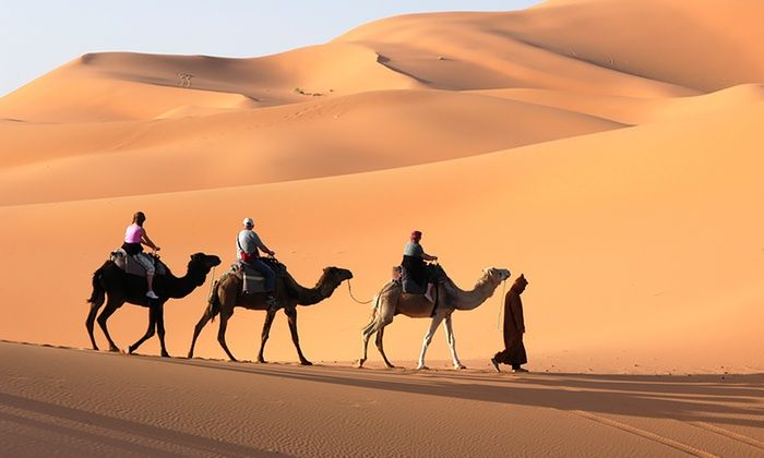 The Quickest Way To Book Your Desert Safari In Dubai Desert Life