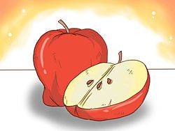 Plant Apple Seeds - wikiHow   Started this process today!