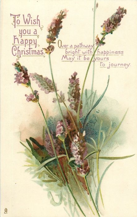 TO WISH YOU A HAPPY CHRISTMAS  lavender