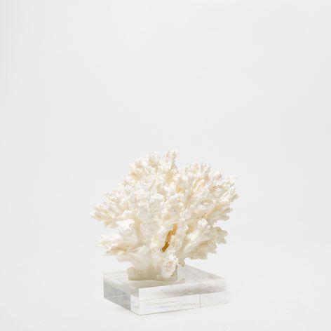 DECORATIEVE KORAAL - Decoratie - New Collection | Zara Home België --- 35.99€