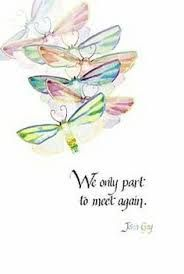 Image result for dragonfly quotes