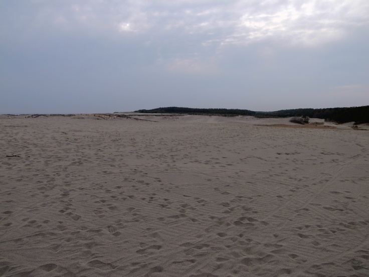 dune at lake-hamana