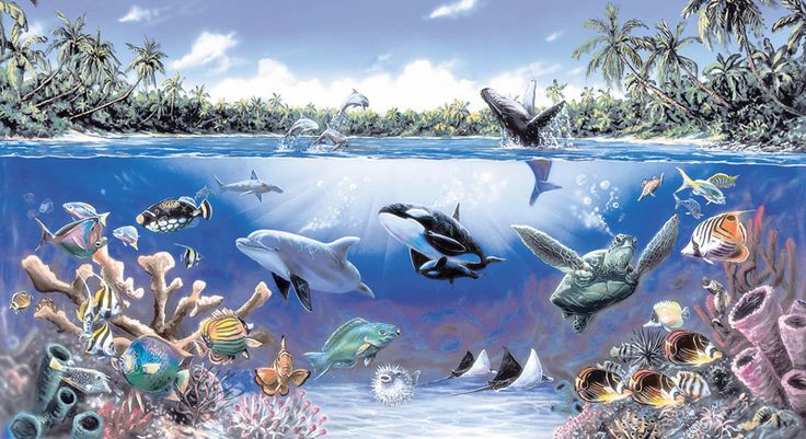 under the sea wall murals sea life ocean wall mural. Black Bedroom Furniture Sets. Home Design Ideas