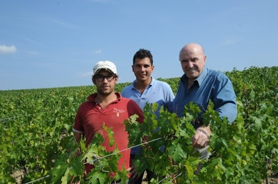 Diego Bonato, Davide Xoho and PieriLuigi in the Tolaini vineyards