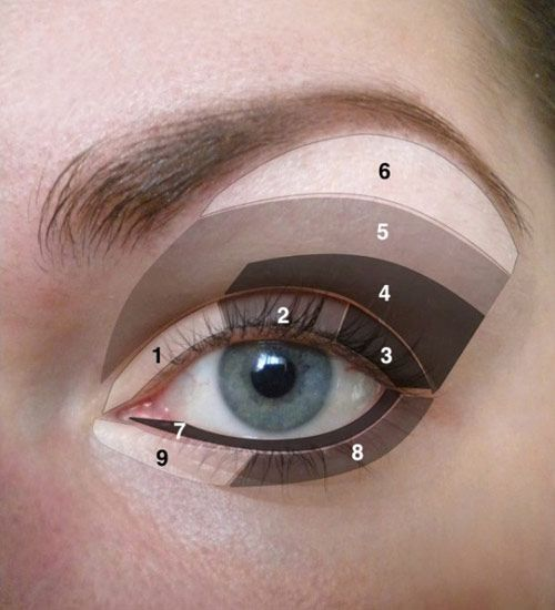 How to Do Your Eye Makeup Correctly-- FINALLY something that clearly shows where different shades are supposed to go.