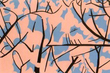 2008年個展DM  桜を見上げるとこんな感じでした。