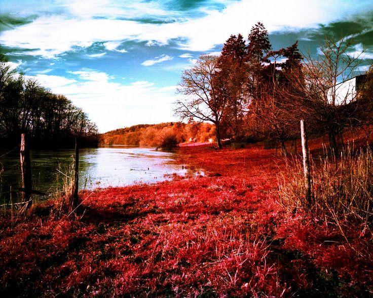 Pour mettre un peu de couleurs dans votre journée, on vous propose une sélection de photos aux couleurs vibrantes, fruits de la photographie infrarouge.