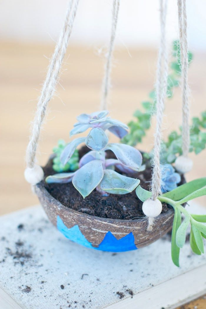 Weekend Project DIY | Coconut Hanging Planter