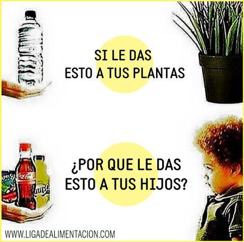 #Nutricion #Gaseosas ¿QUE TOMAN LOS NIÑOS?