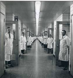 Anyone know the history of animal testing?