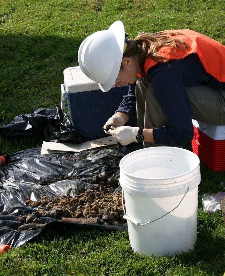 Careers in Environmental Science | EnvironmentalScience.org