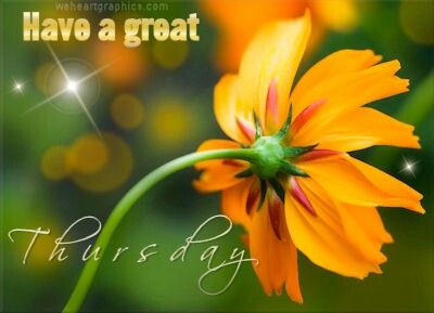 Have A Great Thursday · Thursday GreetingsHappy ThursdayWeekend QuotesCool  WallpaperHd ...