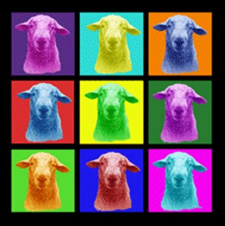 The Sheep and Wool Festival New York State. Image based on original artwork by Susan Harding Merancy.