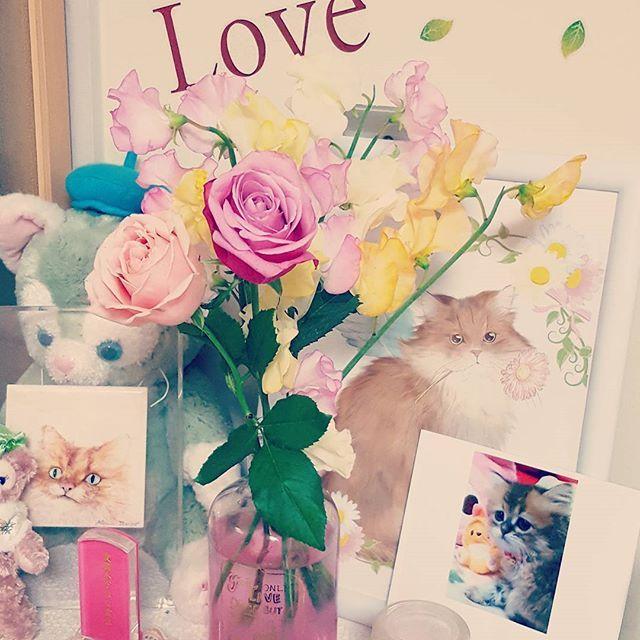 Happy Birthday✨ 2月7日💗はなの誕生日 昨日の自分のよりも特別な日な気がする😳 元気だったら9歳だね! 天国で叔母にpartyしてもらってるかな😸 ❤︎I LOVE YOU❤ *:†:*:†::†:*:†:* #愛猫#はな#誕生日#チンチラゴールデン#ペルシャ猫#cat#猫#ふわふわ#cute#最愛の#娘#おめでとう#大好き#love#happybirthday#flower#sweetpea#rose