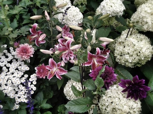 Hydrangeas, lilies, dahlias and lavatera