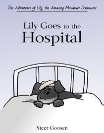 Lily-Goes-to-the-Hospital-cover-min
