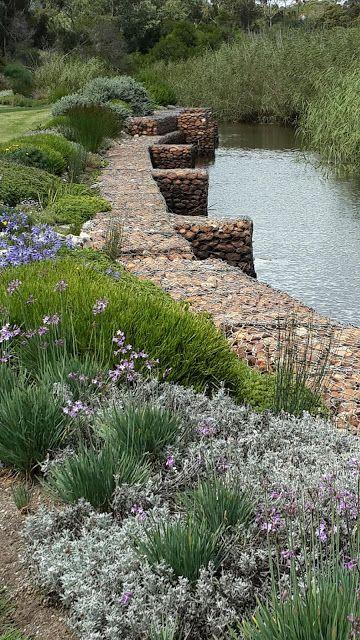 Fynbos Gardens Hermanus