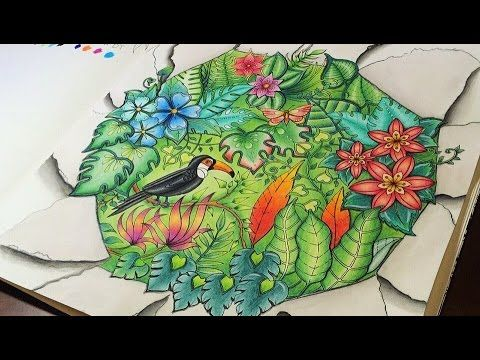 Magical Jungle Coloring Competition
